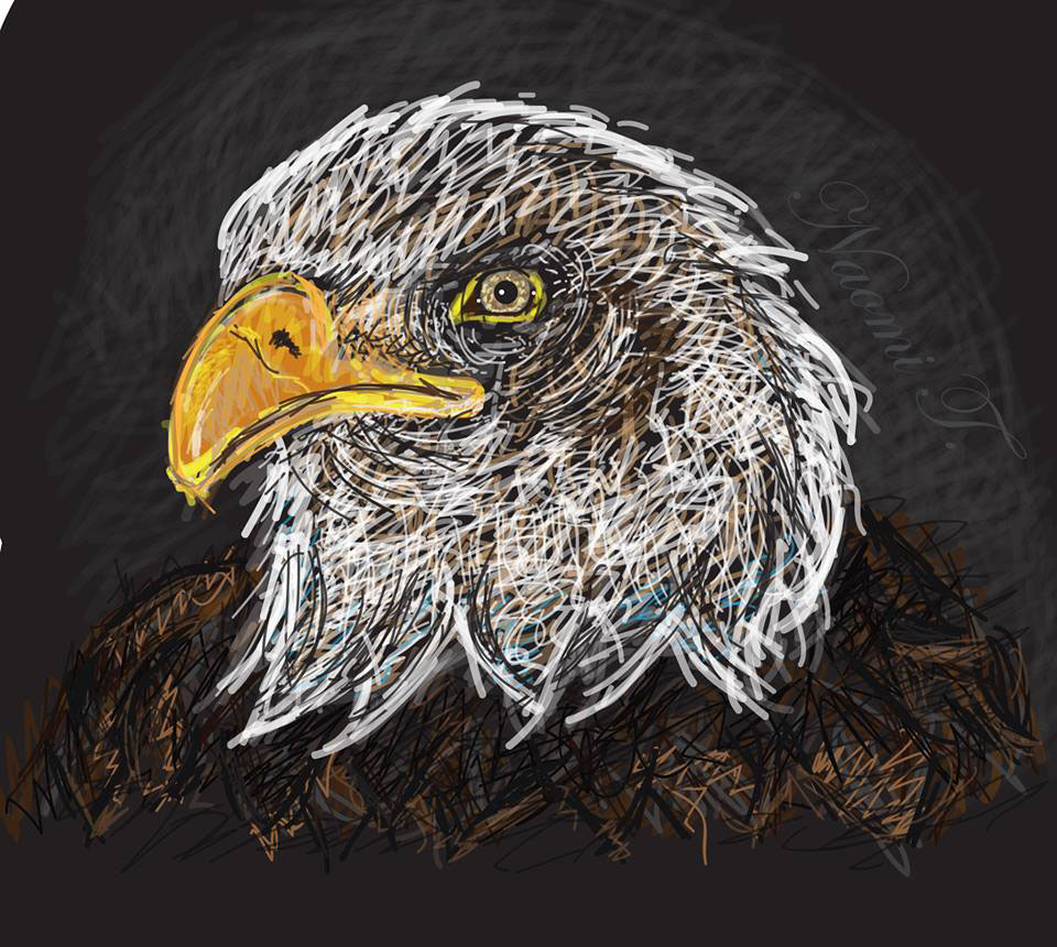 digital eagle